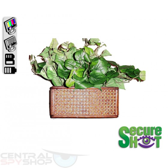 SecureShot Covert Camera Recorder Fake Plant (Color System)